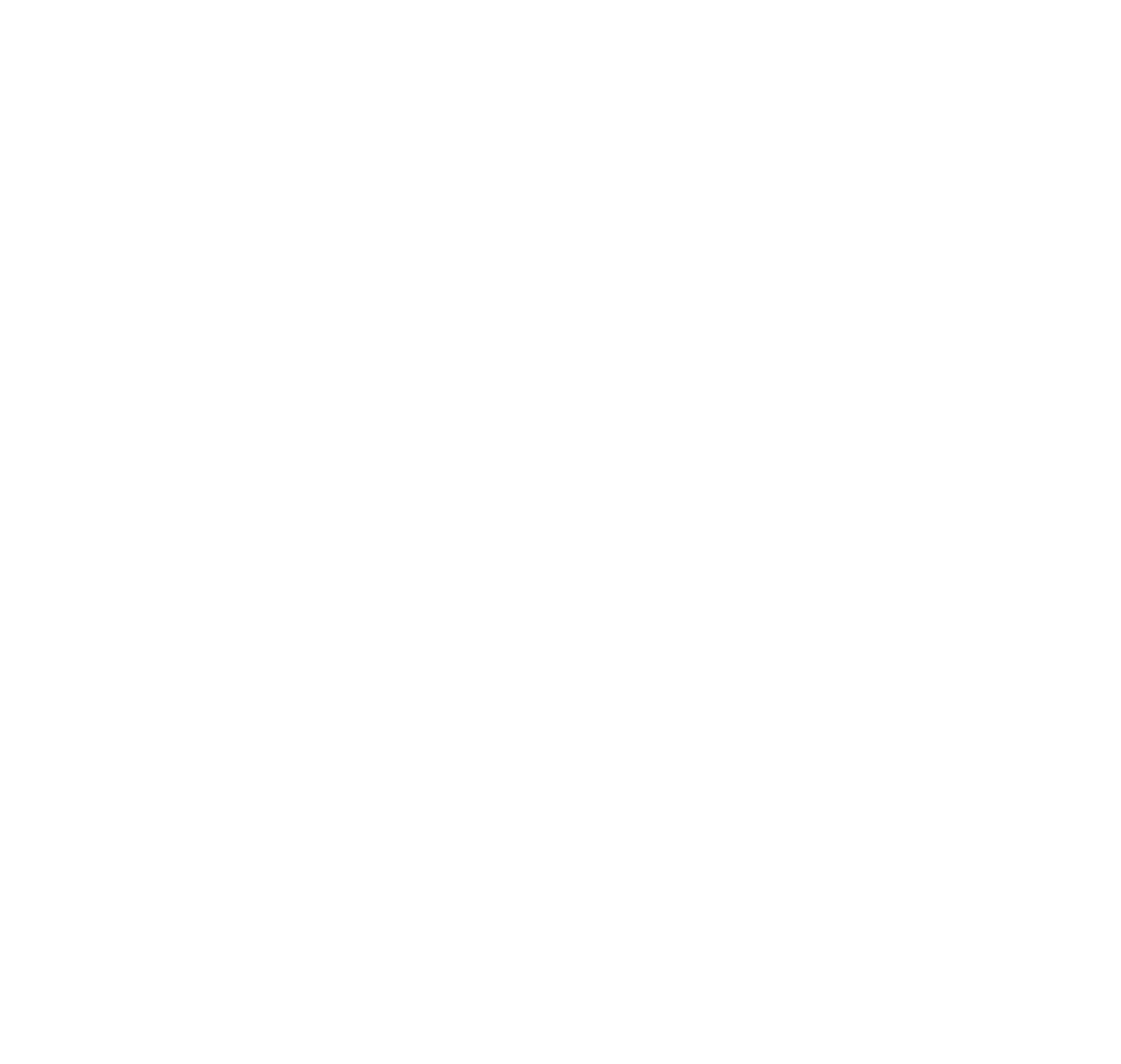 Lösung Pfeile Icon weiß