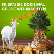 Feiern Sie doch mal grüne Weihnachten